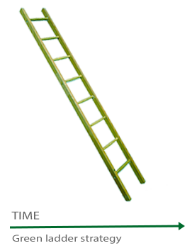 green ladder exit strategy